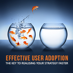 Sign up for our Effective User Adoption Webinar and explore a breakthrough approach to the process of effective user adoption!