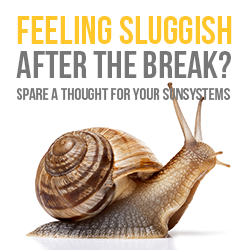 Still feeling sluggish after the break? Spare a thought for your systems, they don't get holidays.